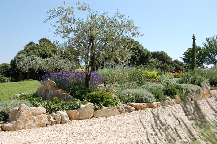 Les jardins de la dr me proven ale paysagistes cr for Creation jardin provencal